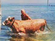 Eggmann mit einer seiner Kühe im Bodensee. (Bild: PD)