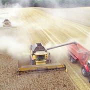 Die Landwirtschaft muss laut dem Weltklimarat umweltfreundlicher werden. (Bild: Bernd Wüstneck/DPA / Neubukow, 5. August 2019)