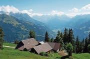 Die Infrastruktur auf der Alp Unter Ochsenweid wird verbessert. (Bild: PD)