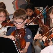 Die Anzahl Fachbelegungen beziehungsweise Anmeldungen für Instrumentalunterrichte blieben in den vergangenen Jahren nahezu gleich. Dennoch müssen die Musikschulen der Region aktiv bleiben. (Bild: PD)