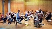 Das Programm der Musikgesellschaft Bristen verspricht viel Abwechslung. (Bild: PD)