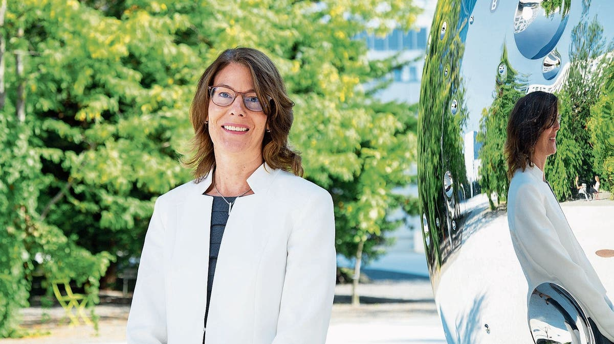 Roche Diagnostics: Chefin Anette Luther Wechselt Nach Basel