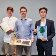 Die Preisträger (v.l.n.r.): Prof. Urs Rieder, Felix Reding, Cédric Meister, Glenn Schönbächler (Bild: PD)