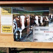 Die Botschaft von Beat und Astrid Schär an die Passanten der Scheuerstrasse in Wittenwil. (Bilder: Kurt Lichtensteiger)