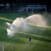 Ein Sportplatz in der Ostschweiz wird bewässert. (Bild: Benjamin Manser)