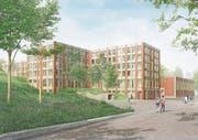 So soll die neue Kantonsschule Ausserschwyz (KSA) dereinst aussehen. (Bild: Visualisierung: PD)