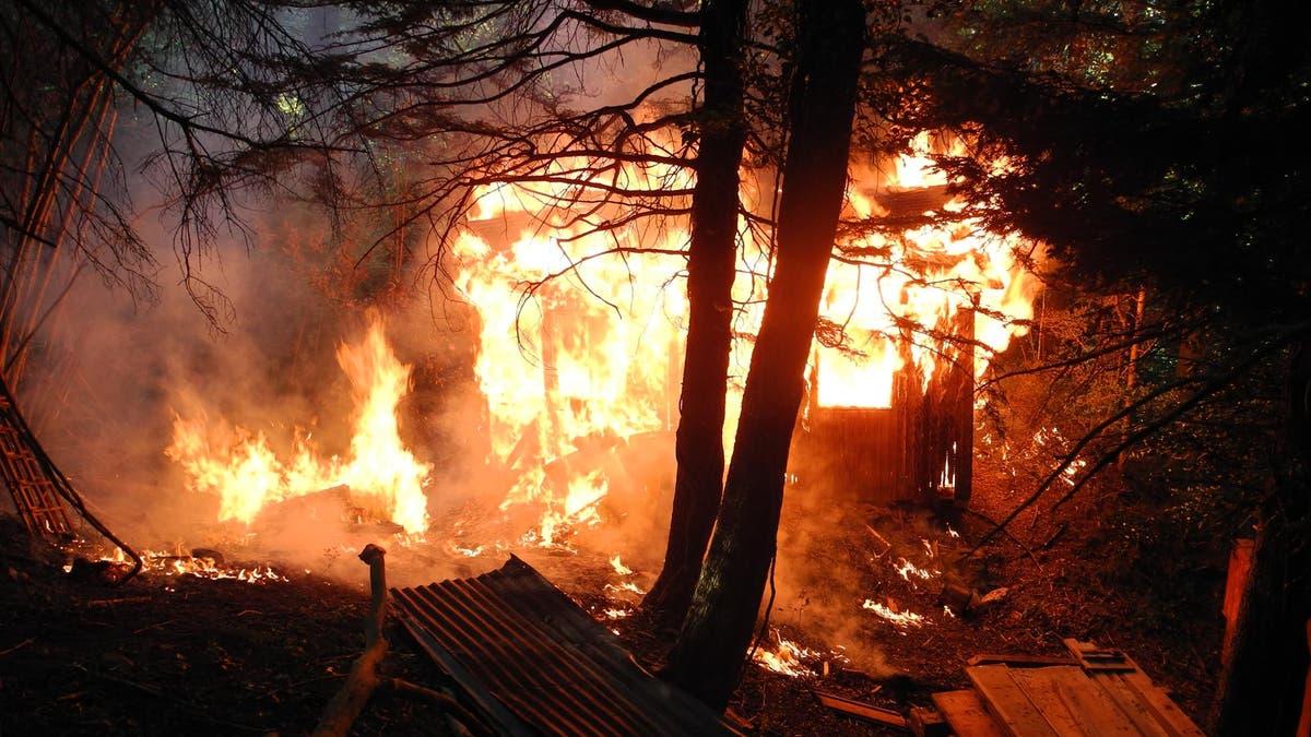 Amazonas Brand Gelöscht