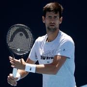 Nicht nur auf dem Tennisplatz fokussiert: Novak Djokovic. (Bild Mark Schiefelbein/AP Photo (Melbourne, 13. Januar 2019))