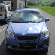 Blick auf die eingeschlagene Windschutzscheibe beim Unfallauto. (Bild: PD)