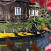 Im deutschen Spreewald kommt die Post zwischen April und Oktober per Boot. (Bild: Patrick Pleul/DPA, 4. April 2019)