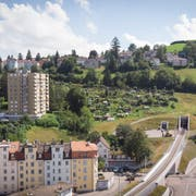 Die Familiengärten an der Ruckhalde. Unten rechts das Nordportal des Ruckhalde-Tunnels der Appenzeller Bahnen. (Bild: Ralph Ribi - 8. August 2019)