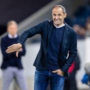 Bleibt beim FC Luzern: Trainer Thomas Häberil. (Bild: Philipp Schmidli, Luzern, 23. April 2019)