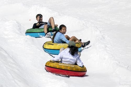 14 Grad auf dem Titlis: Touristen geniessen den Schnee und die Fahrt mit dem Bob. (Bild: Alexandra Wey / Keystone, Engelberg, 26. Juni 2019)