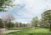 Die Wohnhäuser werden ringförmig angelegt. Die Grünfläche soll als Park mit öffentlichen Gehwegen genutzt werden. (Visualisierung: PD)