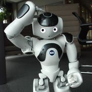 Der Roboter Nao ist 58 Zentimeter gross und sehr beweglich. (Bild: pd)