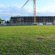 Auf diesem Feld bei der neuen Sporthalle soll es einen Kunstrasenplatz geben. (Bild: Trudi Krieg)