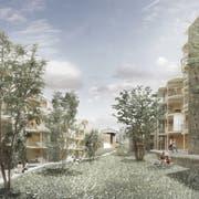 Wohnen im Grünen: Zwischen den beiden Gebäuden der Überbauung «Holts» ist ein Freiraum mit Wiesen- und Rasenflächen vorgesehen. (Bild: PD)