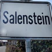 Salenstein ist eine Einheitsgemeinde. Deshalb gehört die Schulpräsidentin oder der Schulpräsident dem Gemeinderat an. (Bild: Nana do Carmo)