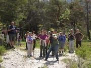 Das Beobachten von Fauna und Flora gehört seit jeher zu den Hauptaktivitäten des NVO, sei es in heimischem Gebiet oder wie hier auf einer Exkursion im Jahr 2010 in den Pfynwald im Wallis. (Bild: PD)