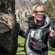 Pia Ricci beim Steineverstecken im Stadtpark. (Bild: Adriana Ortiz Cardozo)