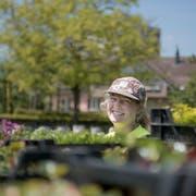 Joanna Zingg hat in den 300 Quadratmeter grossen Treibhäusern Tausende junger Pflanzen angezogen, die nun ins Freie gebracht werden oder bereits wurden. (Bilder: Adriana Ortiz Cardozo)