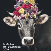 Die Olma Messen setzen auf eine Kuh als Werbebotschafterin. Das Sujet verbindet gemäss Jury Tradition und Bodenständigkeit mit Moderne. (Bild: Olma Messen St.Gallen)