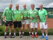 Der Aufstieg in die Nationalliga C ist für die Herren 65+ des Tennisclubs Wildhaus-Unterwasser ein grosser Erfolg. (Bild: PD)