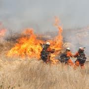 Feuerwehrleute löschen Buschbrände in Westhills. Die Brände begannen bereits am 8. November (Bild: EPA/EUGENE GARCIA, 11. November 2018)