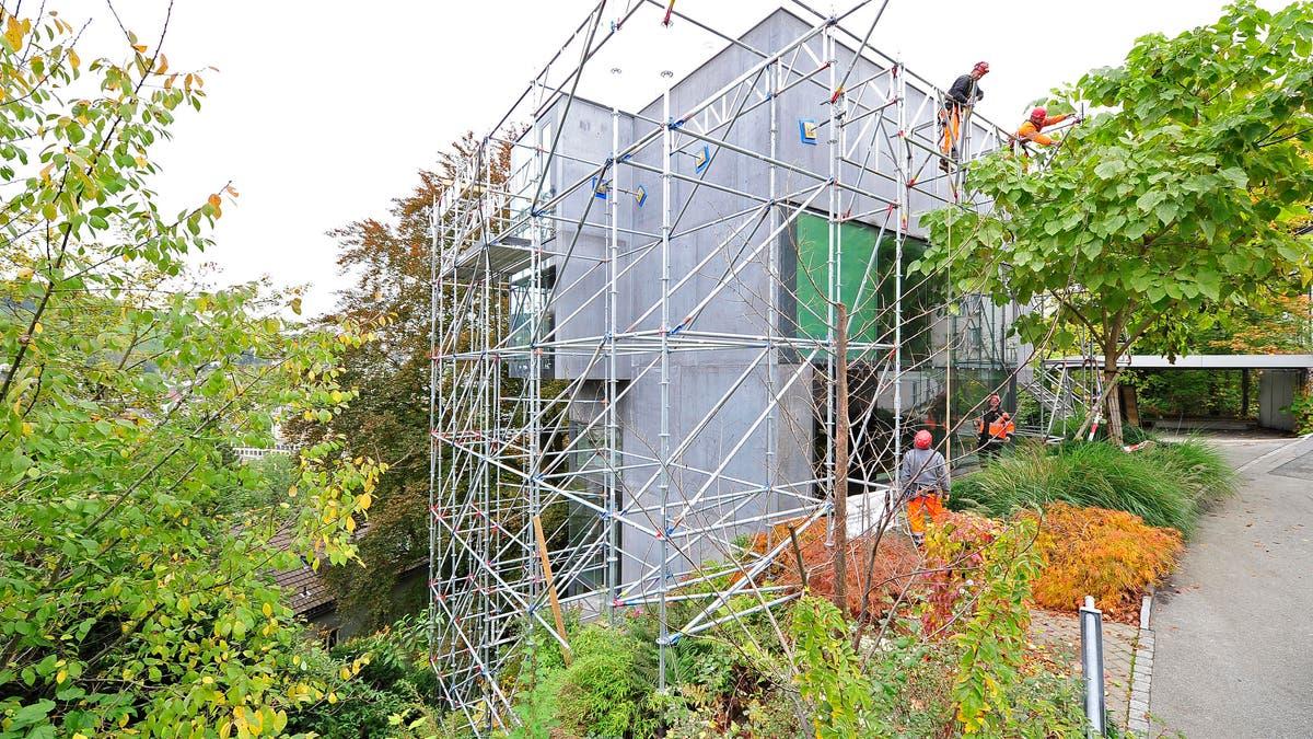 Baumhaus Architekturbüro baumhaus architekt verliert prozess st galler tagblatt