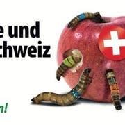 Das neue Kampagnenplakat der SVP. (Bild: ZvG)
