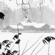 In der Frauenbadi auf Dreilinden soll künftig im Winter eine Sauna betrieben werden. Saisonstart wäre jeweils im Oktober, Saisonende im April. (Leserbild: Franz Häusler - 5. Januar 2019)