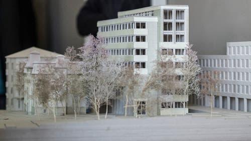 Modellaufnahme des neuen Ensembles von Westen her: Links hinter den Bäumen die Villa Wiesental, dahinter der Büroneubau und rechts davon der «Sankt Leopard». (Bild: Hanspeter Schiess - 19. Februar 2019)