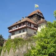 Das Schloss Frauenfeld. (Bild: PD).