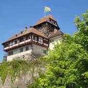 Das Historische Museum Thurgau ist heute im Schloss Frauenfeld untergebracht. (Bild: PD)