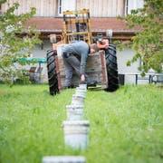 Zuletzt mussten Ostschweizer Obstbauern vor zwei Jahren Frostkerzen aufstellen - damals jedoch im April. (Bild: Ralph Ribi, 19. April 2017)