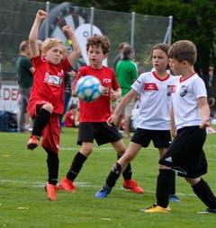 Bei den Bambini treffen der SC Berg und Münsterlingen (rot) aufeinander. (Bild: Donato Caspari)