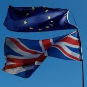Die britische Regierung arbeitet im Moment mit Hochdruck daran, Handelsverträge mit einzelnen Staaten abzuschliessen. (Bild: Alastair Grant/AP, 27. Februar 2019)