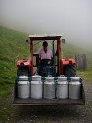 Die Viehwirtschaft und die Milchproduktion dominieren weiterhin die St.Galler Landwirtschaft. (Symbolbild: Gian Ehrenzeller/Keystone)