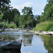 In der Murg bei Frauenfeld sucht die Bevölkerung - trotz niedrigem Wasserstand - Abkühlung. (Bild: Sebastian Keller)