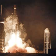 Eine SpaceX Falcon-Rakete startet am 25. Juni 2019. (Bild: AP Photo/John Raoux)
