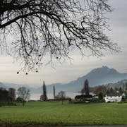 Die Gesamtzonenplanung des Bezirks Küssnacht sieht vor, das Gebiet Burghof in Merlischachen neu einzuzonen. Zukünftiges Siedlungsgebiet Burghof in Merlischachen.Fotografiert am 21. November 2009 in Merlischachen(NeueLZ/Manuela Jans)