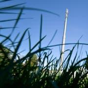 Die über 20 Meter hohe Salt-Mobilfunkantenne beim Entsorgungsplatz. (Bild: Donato Caspari)
