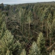 Geht es nach den Bauern, der Holzwirtschaft und der Luzerner FDP, unterstützt der Kanton die Verwendung von Holz zu wenig. (Bild: Pius Amrein, Lieli, 8. Januar 2018)