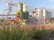 Blick auf das Areal der Firma Lötscher Kies + Beton AG in Ballwil. (Bild: PD)