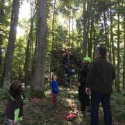 Kletterer Patrick Zürcher half den Kindern, gefahrlos auf die Bäume hinauf zu kommen. (Bild: PD)