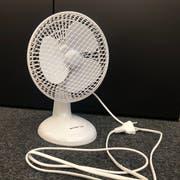 Drei Franken kostet dieser Ventilator von Ottos. (Bild: Géraldine Bohne)