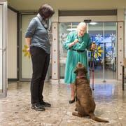Ein Hundeguetzli für Pandra: Valerie Buchmann, Bewohnerin des Altersheims Rotmonten, füttert die Hündin im Beisein von Luzia Manser, Leiterin Pflege und Betreuung. (Bild: Hanspeter Schiess)