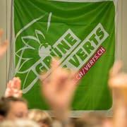 Vor vier Jahren ging noch alles seinen gewohnten Gang: Die Thurgauer Grünen votierten für eine Listenverbindung mit der SP. (Bild: Reto Martin)