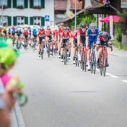 Die Tour de Suisse vergangenes Jahr am Sonntagnachmittag bei der ersten Etappe in der Region Frauenfeld. Im Bild die Durchfahrt bei Pfyn. (Bild: Andrea Stalder)