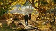Nuri Bilge Ceylan inszeniert mit Flair für die Schönheit der Natur: Szenenbild aus «The Wild Pear Tree». (Bild: Trigon-Film/PD)